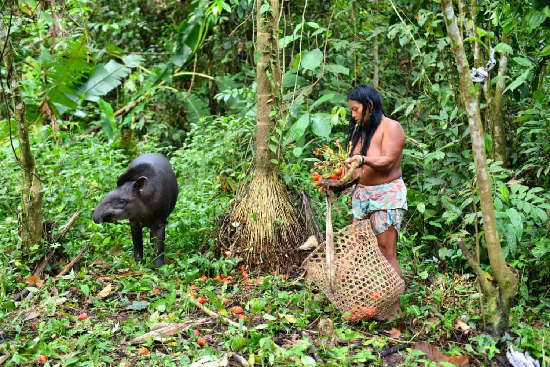 Photo d'une femme du peuple premier Huaorani par Jean-Pierre Danvoye lors de son voyage en Équateur