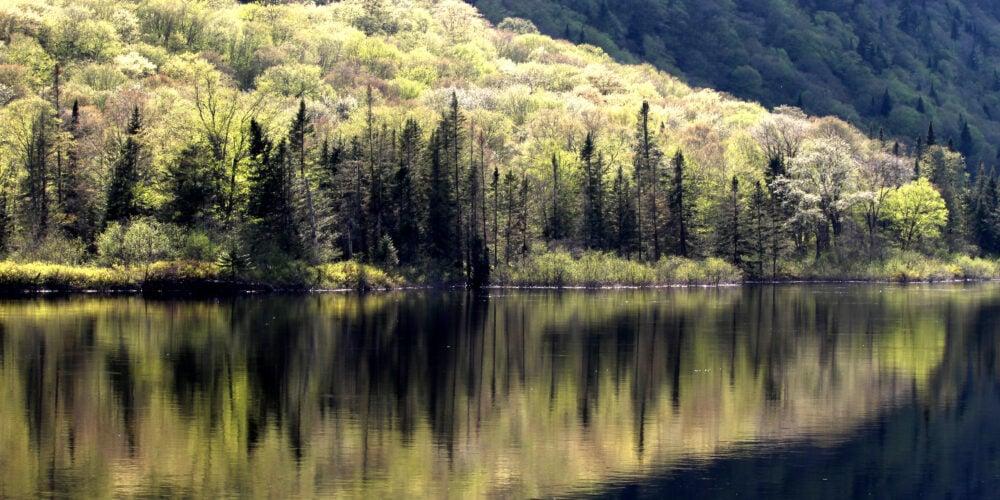 Mordue de plein air, Katia se rend régulièrement dans le parc national de la Jacques-Cartier pour faire de la randonnée et photographier les paysages. Crédit photo: Katia Bussière
