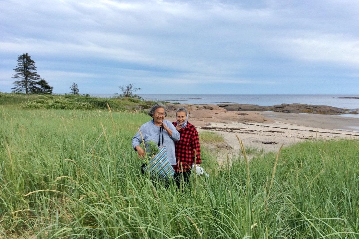 Deux innues cueillent des plantes sur le littoral de la Côte-Nord.